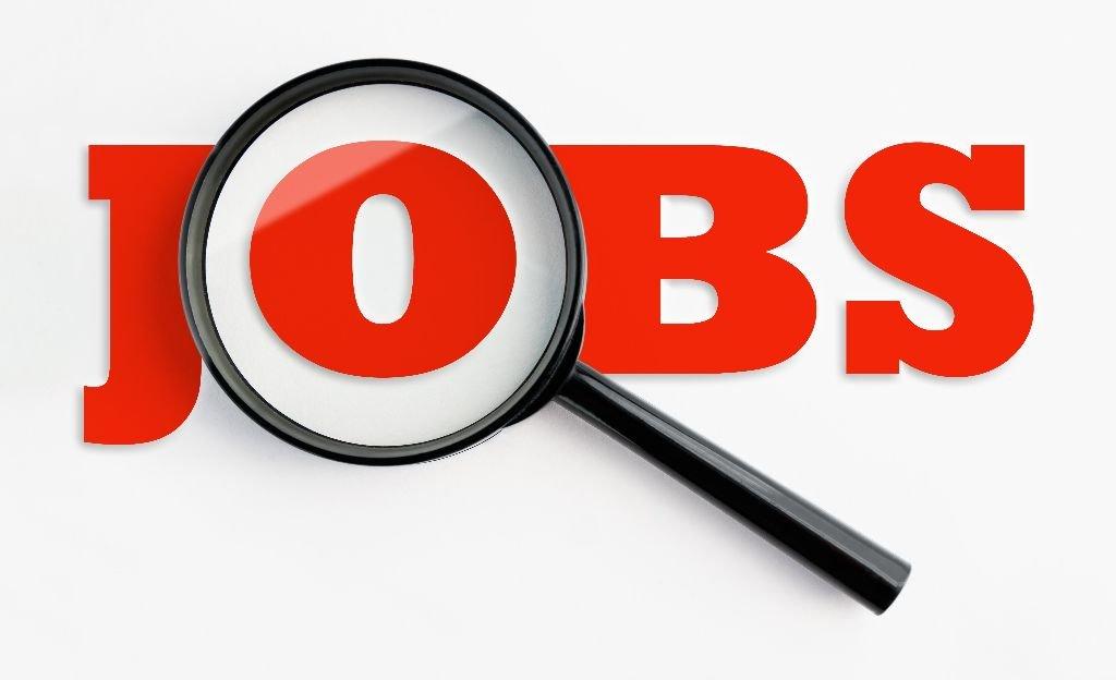 job-vacancies.jpg