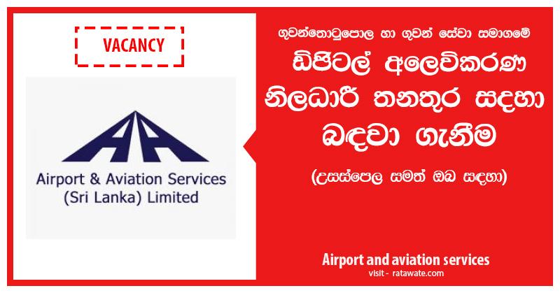 Airport-aviation-srvice-digital-marketing-baner.jpg