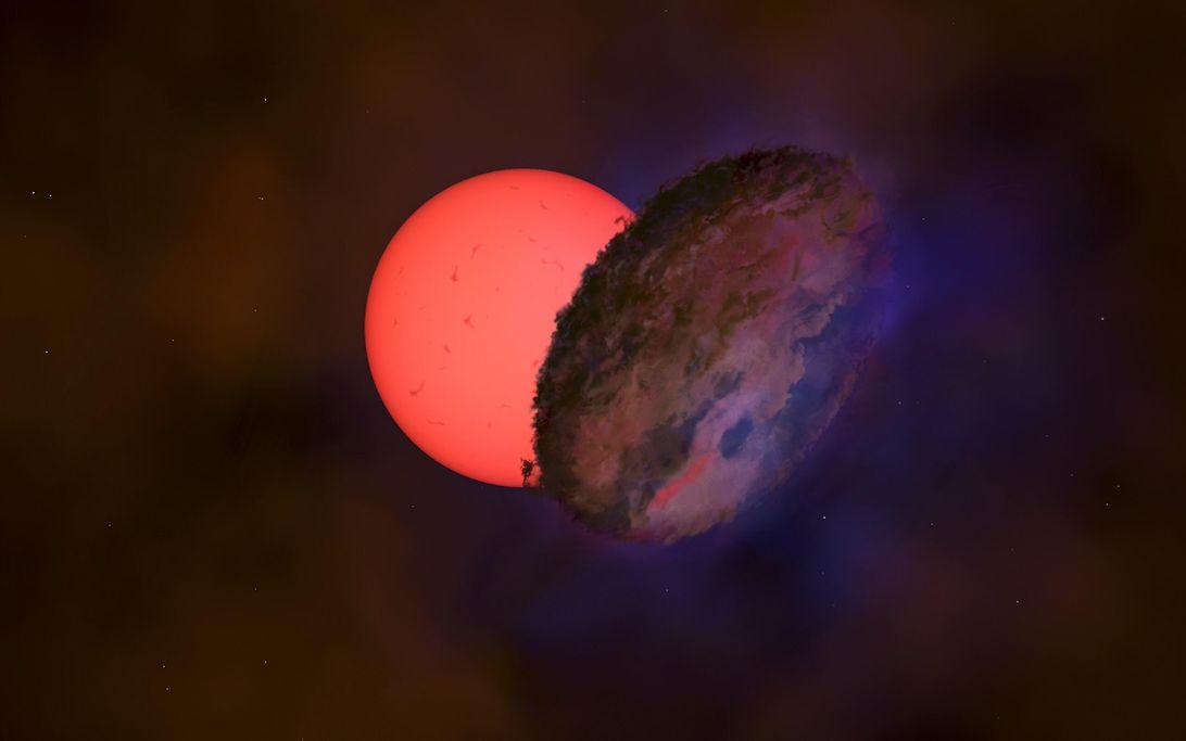 blinking-giant-star-vvv-wit-08.jpg