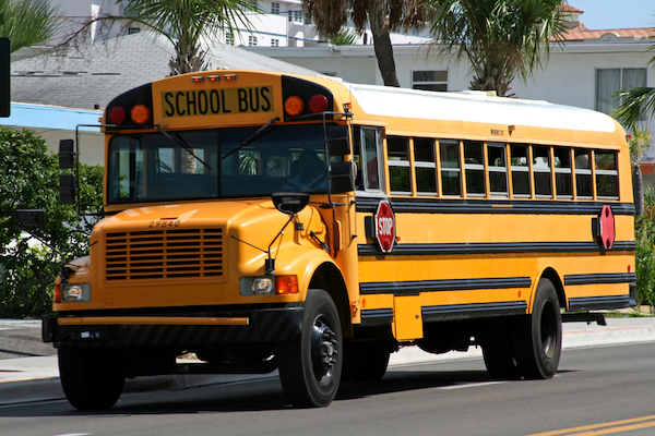 heres-what-the-black-stripes-on-school-buses-are-really-for-1.jpg